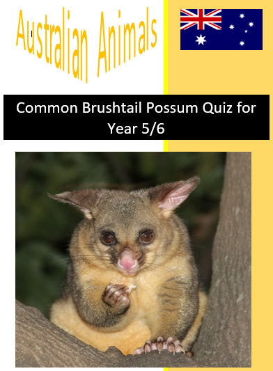 Common Brushtail Possum Quiz