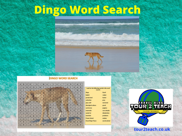 Dingo word search cover