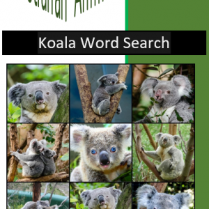 Koala Word Search