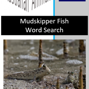 Mudskipper Word Search