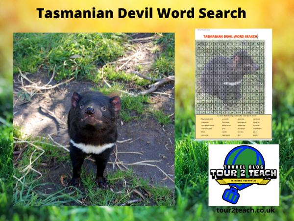 Tasmanian devil word search cover
