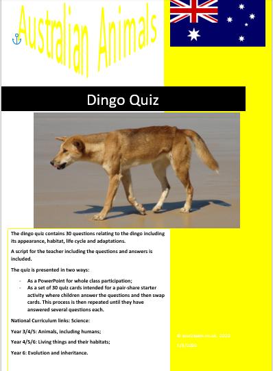 Dingo quiz