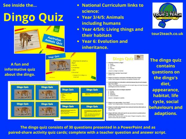 dingo quiz inside cover
