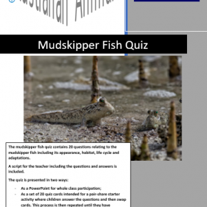 Mudskipper fish quiz
