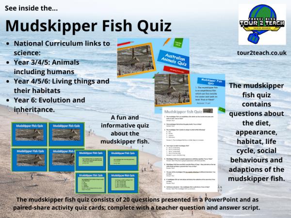Mudskipper fish quiz inside cover