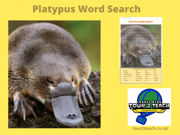 platypus word search cover