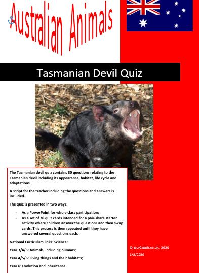 Tasmanian devil quiz
