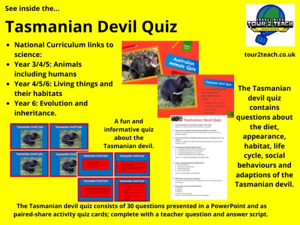 Tasmanian devil quiz inside cover