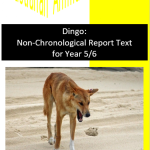 Dingo Text