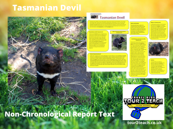 Tasmanian devil report cover