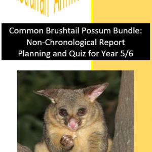 Common Brushtail Possum Bundle