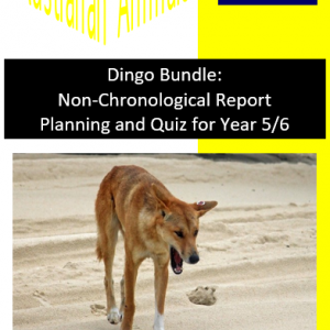 Dingo Bundle Planning and Quiz