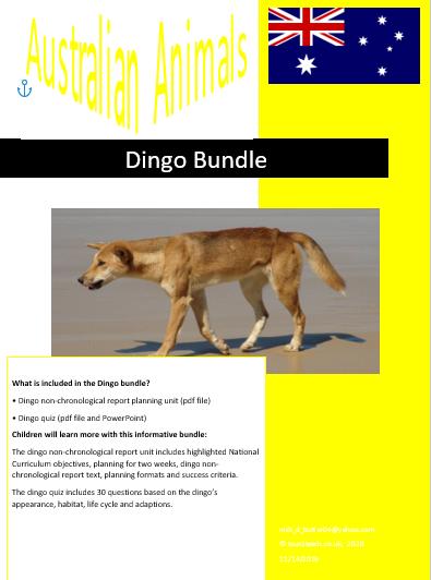 dingo bundle