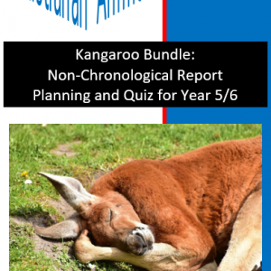 Kangaroo Bundle Planning and Quiz