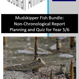 Mudskipper Fish Bundle Planning and Quiz