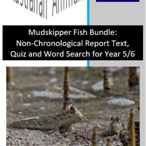 Mudskipper Fish Bundle