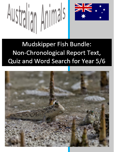 Mudskipper Fish Bundle