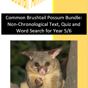 Common Brushtail Possum Bundle