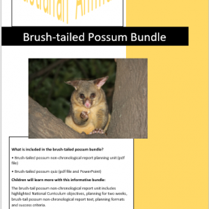 brush-tailed possum bundle