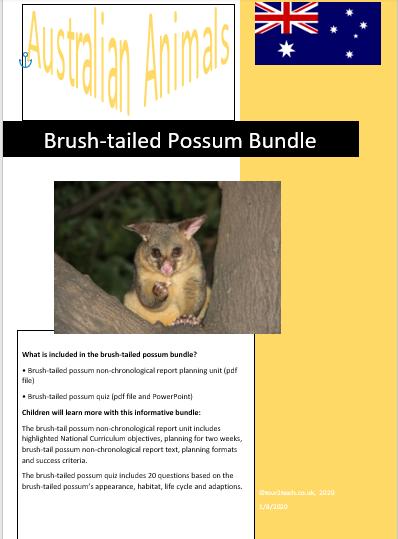 brush-tailed possum bundle