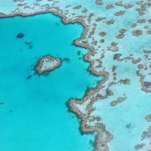 Great Barrier Reef Non-Chronological Report Text