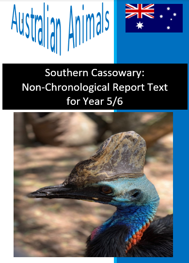 Southern Cassowary Text