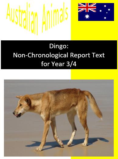 Dingo Report Text