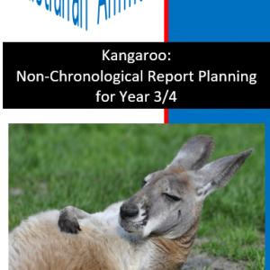 Kangaroo Report Planning