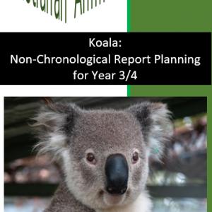 Koala Planning for Year 3/4